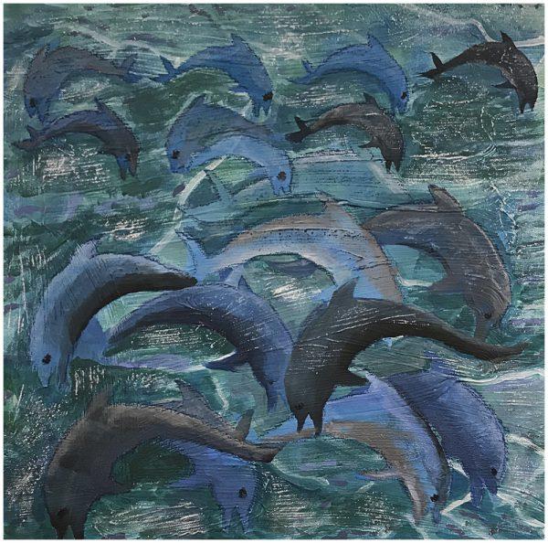 dolfijnen 35 euro