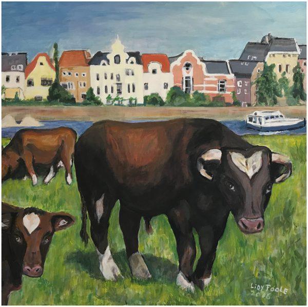koeien 375 euro
